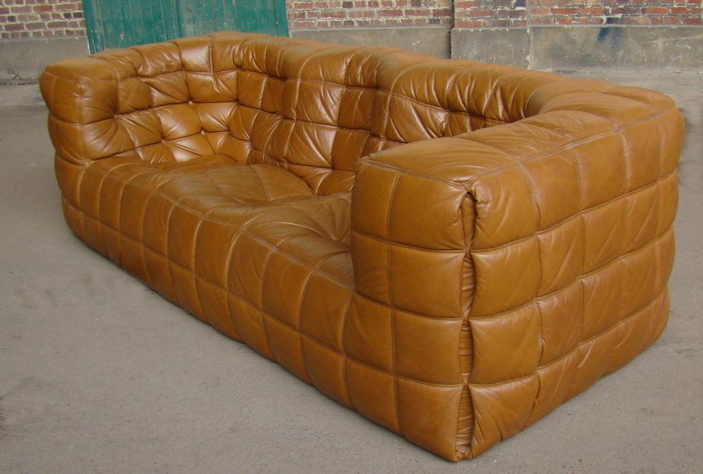 michel ducaroy rare leather sofa by ligne roset modernism. Black Bedroom Furniture Sets. Home Design Ideas